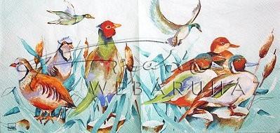 Vízparti madarak, Szalvéta