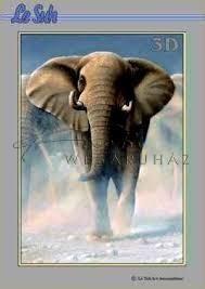 Vadon élő állatok, Fázisos 3D füzet