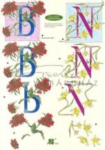 B és N betű, Fázisos 3D