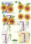 T és Z betű, Fázisos 3D