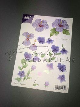 Lila virág, Fázisos 3D
