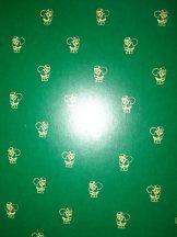 Kartonpapír - Télapó mintás zöld színű