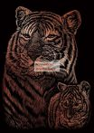 Kreatív hobby - Réz - Tigrisek