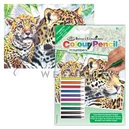 Számozott színező készlet, mini - Jaguár család