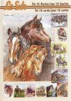 Lovak és lovaglás, 3D füzet