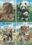 Oroszlán, panda, elefánt és tigris, 3D készlet