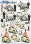 Meleg házasság, Fázisos 3D