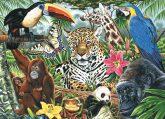 Kreatív hobby - Kifestő - Állatkert