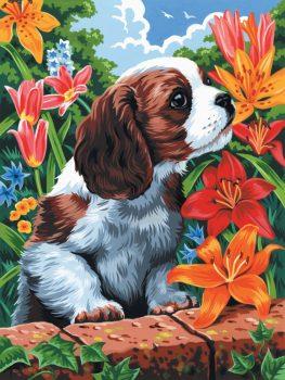 Kreatív hobby - Kiskutya, kifestő festővászonra