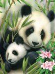Kifestő készlet számokkal, ecsettel, gyerekeknek 8 éves kortól - 20x25 cm - Pandák