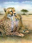 Kreatív hobby - Leopard