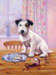 Kifestő készlet számokkal, ecsettel, gyerekeknek 8 éves kortól - 20x25 cm - Éhes kutya
