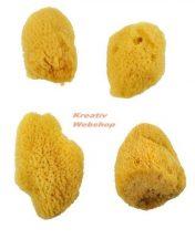 Kreatív hobby - Festőszivacsok - Royal Silk Sponge  4 - selyem szivacskészlet, közepes méret, 4 db-o