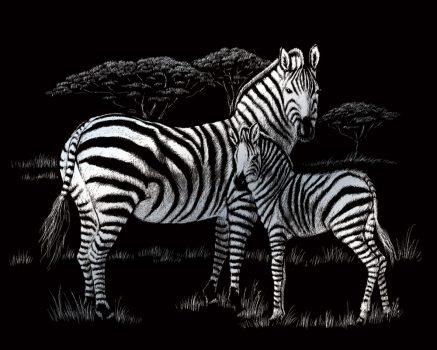 Kreatív hobby - Zebrák