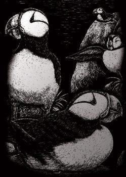 Kreatív hobby - Ezüst - Sarki madár