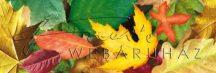 Kartonpapír - Őszi falevelek, nagymintás karton 1 lap