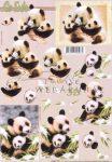 Panda mama bocsokkal, Fázisos 3D